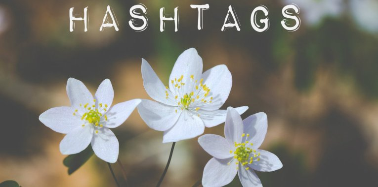 hashtags flowers