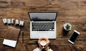 florida-content-writer
